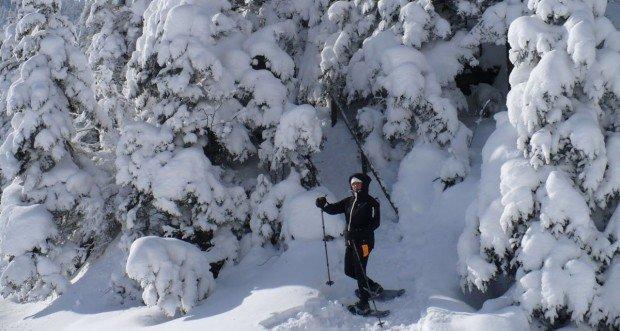 """Ski Mont Orford Snowshoer"""
