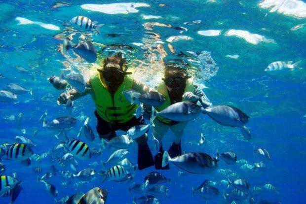"""Snorkeling"""