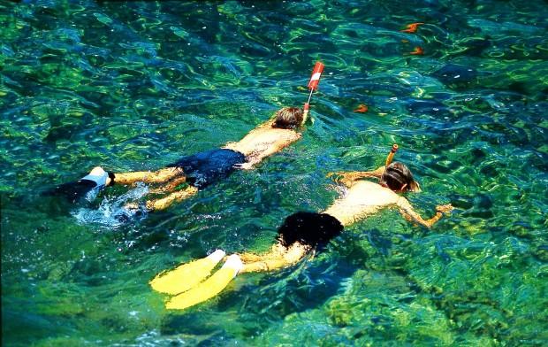 """Snorkeling Mauna Kea Beach"""