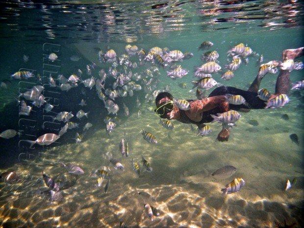 """""""Snorkeling at Ilha Grande"""""""