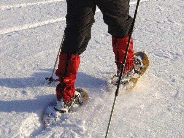 """Snow Shoeing"""