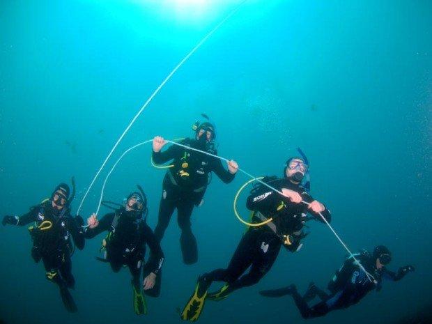 """Sponge Gardens, North Head Scuba Diving"""