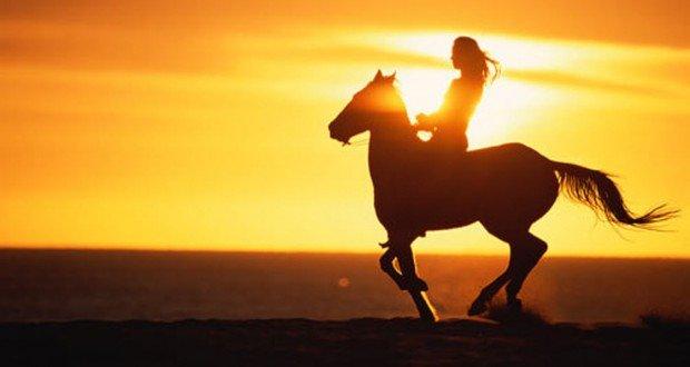 """Swansea Horseback Riding"""