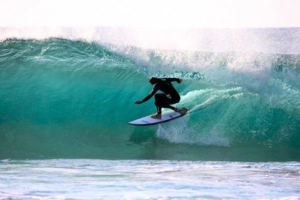 """""""Whale Beach Surfing"""""""