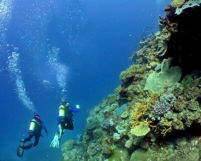 """scuba diving Australia"""