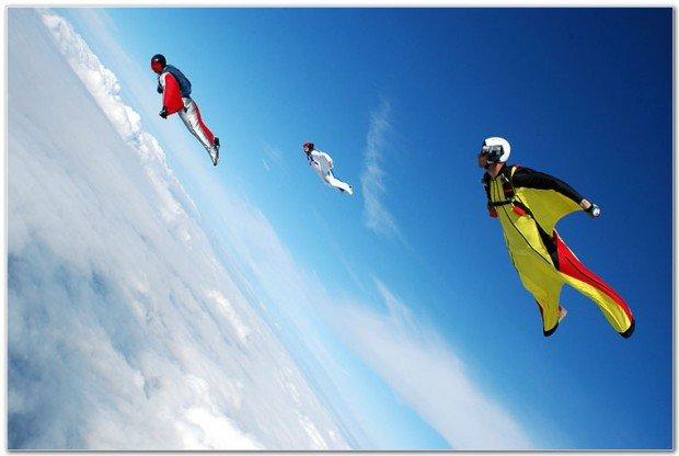 """Birdmen sky flying"""