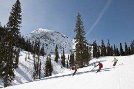 Fernie Alpine, Fernie