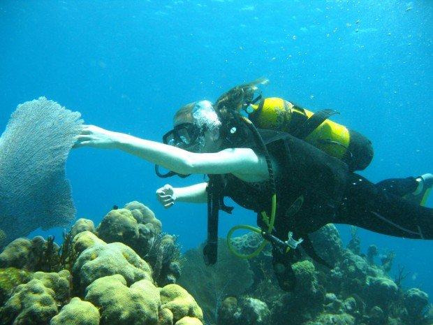 """""""Bare Island Scuba Diver"""""""