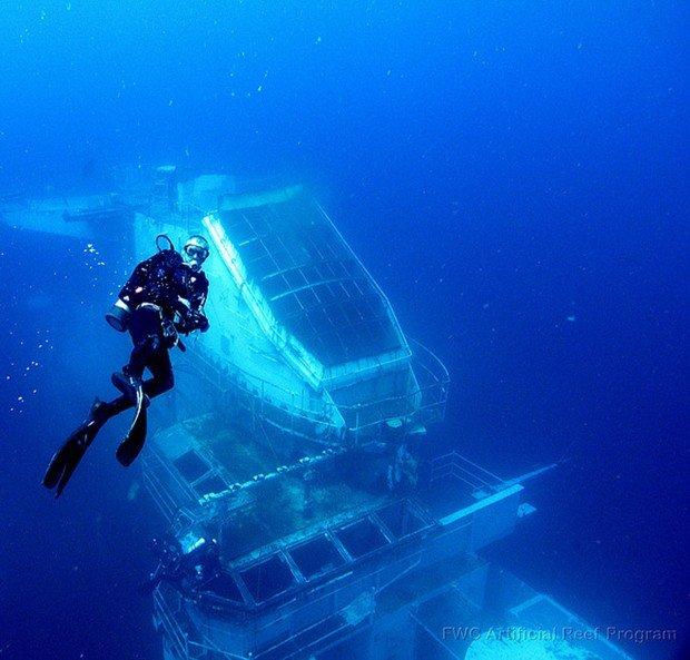 """""""Clifton Gardens Scuba Diver"""""""