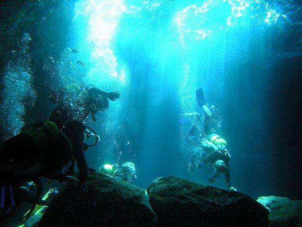 """""""Coogee Beach Scuba Diving"""""""