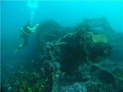 MV Malabar Wreck, Sydney