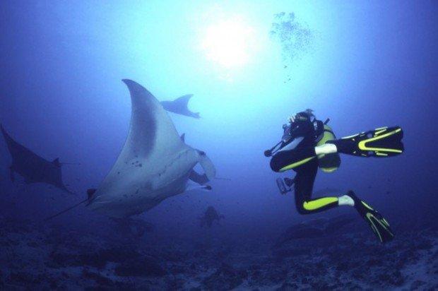 """Magic Point Scuba Diving"""