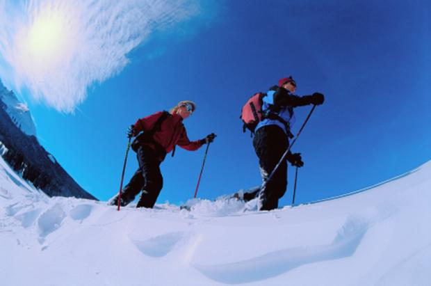 """Mt Norquay Snowshoeing"""