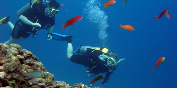 """Scuba Dive in Pefkos Rhodes island"""