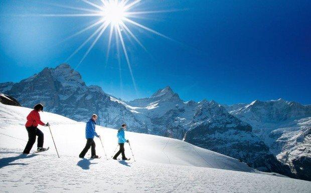 """""""Sunshine Village Snowshoeing"""""""