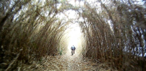 """Van Gaalens's Mountain Biking Trail"""