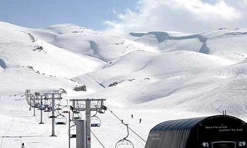 """Alpine Skiing in Cedars Resort"""
