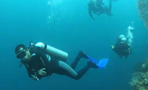 """Scuba diving at Menjangan Island"""