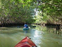 Oleta River State Park, Miami