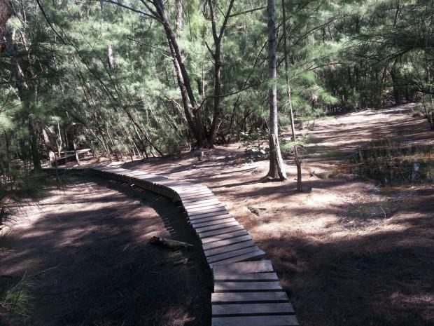 """Mountain Biking at Oleta River State Park"""