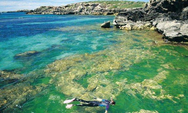 """Scuba Diving at Penguin Island"""