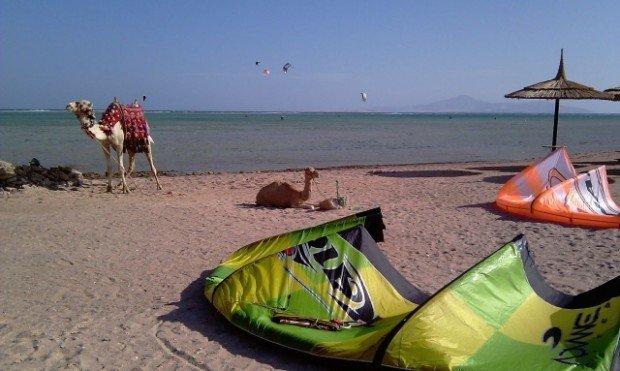 """""""Kitesurfing in Sharm-Nabq Bay"""""""