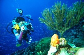 The Passage, Raja Ampat Islands