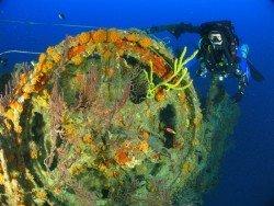Hydro Atlantic Wreck, Fort Lauderdale