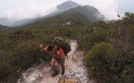 Gunung Tahan, Taman Negara National Park