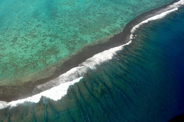 """Kitesurfing at Ha'apiti Reef"""