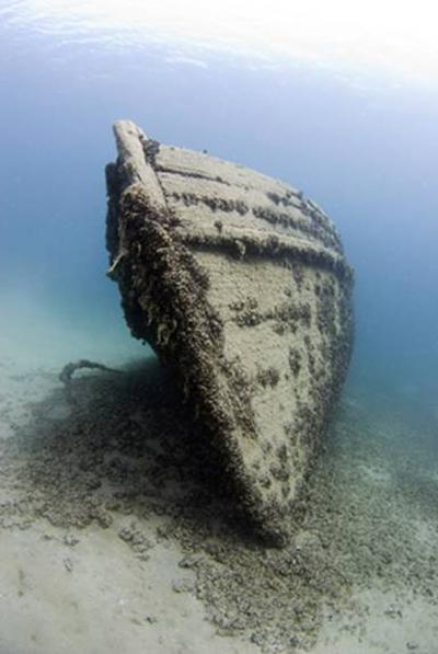 """""""Scuba diving in Elmwood Shipwreck"""""""