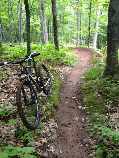 """Mountain Biking at Sure Would Trail"""