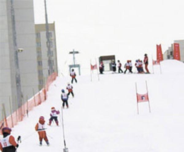 """""""Alpine Skiers in Servenoe Butovo"""""""