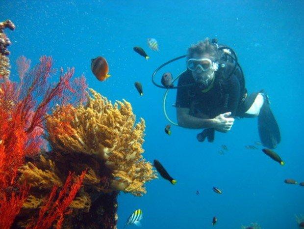 """Jemeluk Bay Scuba Diving"""