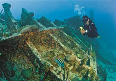 ''Scuba Diving at Pelinaion''
