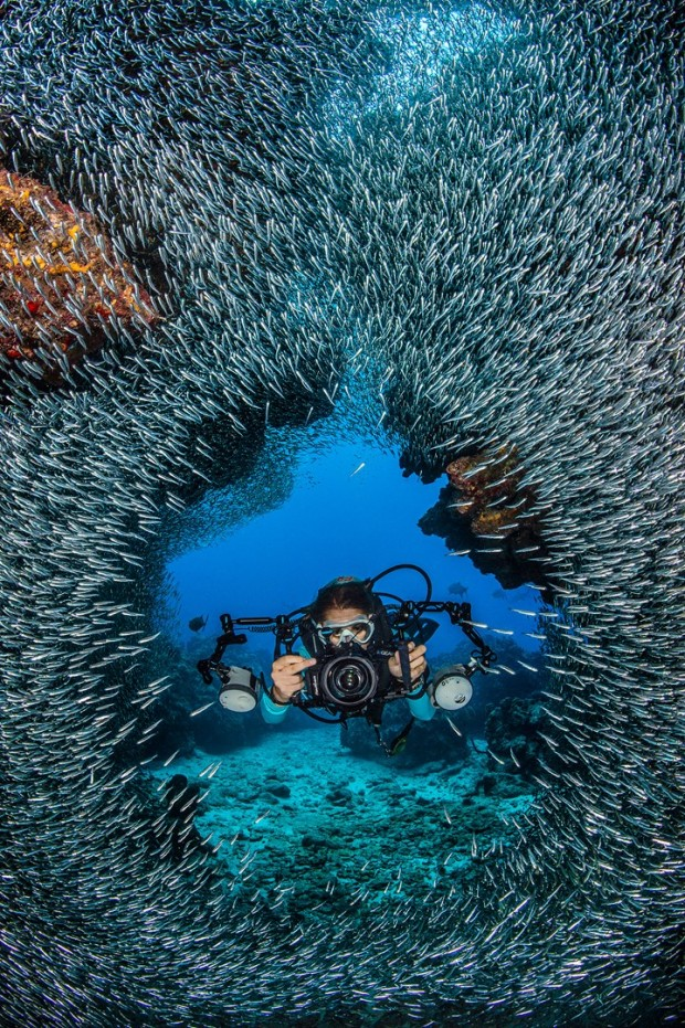 ''Scuba Diving at Devil's Grotto''