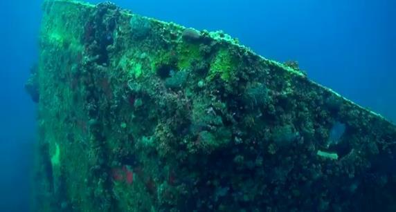 ''Scuba diving at WIT Shoal Wreck''