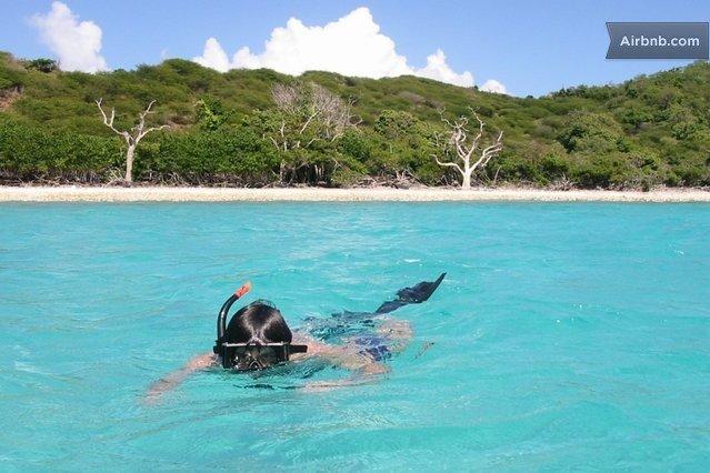Snorkeling Magens Bay Saint Thomas US Virgin Islands