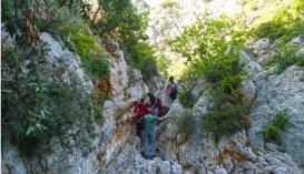 Daphnona Gorge, Leonidio