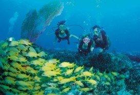 Skeludi Island, Corfu Island