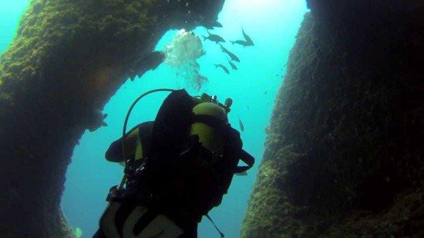 """""""Scuba Diving at La Vaca"""""""
