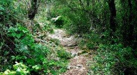 The Corfu Trail, Corfu Island